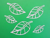 Beautiful leaves cut from white paper royalty free stock photos