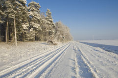 Nice winter landscape royalty free stock images