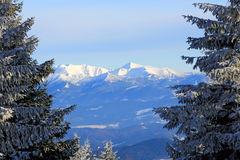 Nice winter scene in Tatra Mountains Royalty Free Stock Photos