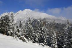 Nice winter scene in Tatras mountains Stock Image