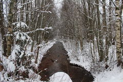 A Nice winterday Royalty Free Stock Photos