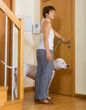 Nice woman taking dog for a walk Stock Images