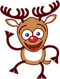 Nice Xmas reindeer waving animatedly Royalty Free Stock Photos