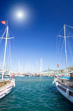 Nice yachts on an anchor in harbor. Royalty Free Stock Image