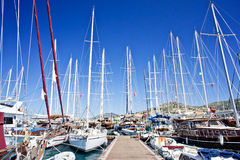 Nice yachts on an anchor in harbor. Stock Images