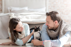 Nice young couple patting the cat Royalty Free Stock Images