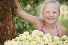 Nice young girl with apples Stock Image