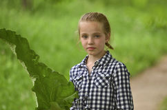 Nice young girl (child) Royalty Free Stock Image