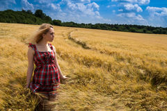 Nice young lady in the rye. Nice young lady standing in the wheat field Royalty Free Stock Image