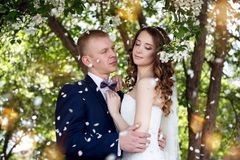 A nice young wedding couple royalty free stock image