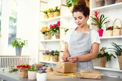 Nice young woman preparing a gift stock photos