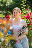 Nice young woman working with bush roses with horticultural tool. S in garden on sunny day Royalty Free Stock Photos