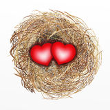 Nicely Built Bird Nest with Two Red Heart Royalty Free Stock Image