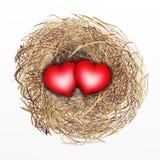 Nicely byggt fågelrede med hjärta för två Red stock illustrationer