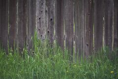 Wood Fence with Grass. A nicely weathered wooden fence with green grass at base Stock Images