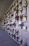 Niches in cemetery. Cemetery niches decorated with flowers on marble tombstones royalty free stock image