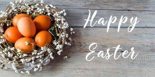 Nichez avec des oeufs de pâques sur le fond en bois gris-clair Joyeuses Pâques Éléments pour la décoration de vacances de table Images libres de droits