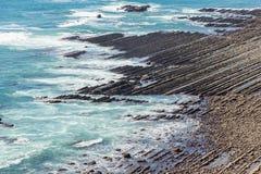 Nichinan kustlinje från Phoenix, synvinkel i Miyazaki, Kyushu, Royaltyfri Fotografi