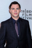 Nicholas Hoult Royalty Free Stock Photography
