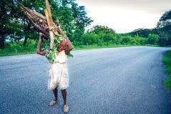 Nicht identifizierte ältere Frau, die hölzerne Niederlassungen auf Straße, nahe Paraiso, Dominikanische Republik carying ist Lizenzfreies Stockbild