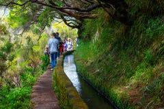 Nicht identifizierte Leute, die zu Levada Risco, Madeira-Insel, Portugal gehen lizenzfreies stockfoto