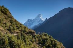 Nicht identifizierte nepalesische Leute auf dem Weg zu niedrigem Lager Everest 2016 Die Weise von Namche-Bazar zu Tengboche-Dorf lizenzfreie stockfotos