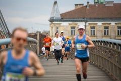 Nicht identifizierte Teilnehmer während des jährlichen Krakau-International Marathons Stockbild