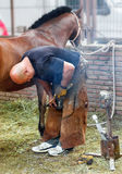 Nicht identifiziertes Horseshoer in der Arbeit Stockbilder
