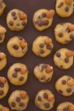 Nicht schon zugebereitete Shortcakes mit Schokoladensplittern Lizenzfreies Stockfoto