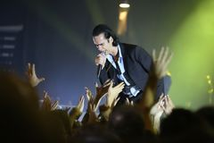 Nick Cave royalty-vrije stock foto's