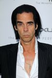Nick Cave Stock Photos