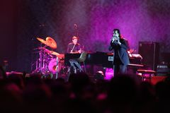Nick Cave Royalty Free Stock Images