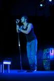 Nick Hexum de 311 en concierto Foto de archivo libre de regalías