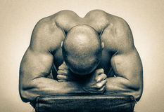 Muscle body builder Stock Photo