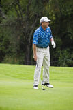 Nick Price - Fairway Shot - NGCs2010 Stock Image