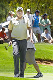 Nick Watney - Ball in Hand Royalty Free Stock Images