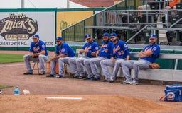 Nicken-Großraum 2017 der New York Mets-MLB lizenzfreies stockfoto