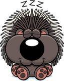 Nickerchen machendes Karikatur-Stachelschwein Lizenzfreie Stockfotos