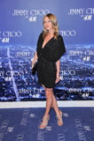 Nicky Hilton. At the Jimmy Choo For H&M Collection, Private Location, Los Angeles, CA. 11-02-09 Royalty Free Stock Image