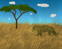 Único tigre de Bengal no safari do papel recicl Fotos de Stock Royalty Free