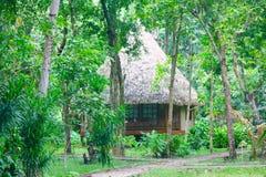 Nicobari Hut Stock Photography
