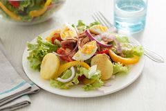 Nicoise da salada Imagem de Stock Royalty Free