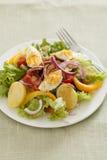 Nicoise da salada Imagens de Stock Royalty Free
