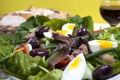 Nicoise da salada Fotografia de Stock