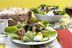 Nicoise de salade Photo stock