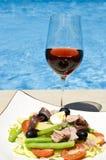 nicoise menchii basenu sałatkowy wino Obrazy Stock