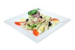 Nicoise Salad Royalty Free Stock Photos