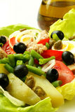 Nicoise salad Royalty Free Stock Photo