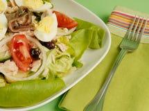 Nicoise Salad Stock Images