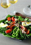 Nicoise salad. French salad with tuna, anchonvies, pepper, egg, tomato, green beans, olive, and cucumber Royalty Free Stock Image